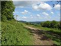 TQ0349 : Waymarker, Albury Downs by Alan Hunt
