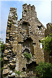 M8738 : Castles of Connacht: Cloonbigny, Roscommon (4) by Mike Searle