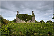 M8937 : Castles of Connacht: Dundonnell, Roscommon (1) by Mike Searle