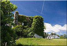 G6324 : Castles of Connacht: Moymlough, Sligo (2) by Mike Searle