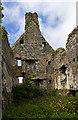 G6639 : Castles of Connacht: Ballincar, Sligo - detail (6) by Mike Searle
