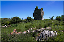 G8341 : Castles of Connacht: Castletown, Leitrim (1) by Mike Searle