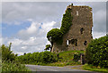 N6436 : Castles of Leinster: Carrick, Kildare (1) by Mike Searle