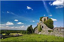 N5231 : Castles of Leinster: Toberdaly, Offaly (2) by Mike Searle