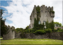 M9711 : Castles of Leinster: Cloghan, Offaly (2) by Mike Searle