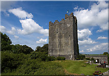 R2884 : Castles of Munster: Dysert O'Dea, Clare (2) by Mike Searle