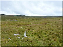 SH7842 : Open land west of Cefngarw by Richard Law