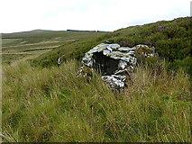 SH7741 : Rudimentary shelter on a hillside by Richard Law