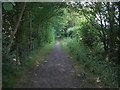 TL4052 : Footpath near Haslingfield by Hugh Venables
