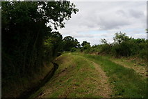 SE6548 : The Minster Way at Langwith Stray by Ian S