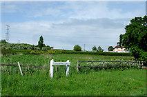 SO8690 : Farmland south-east of Swindon, Staffordshire by Roger  Kidd