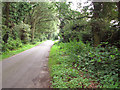 TG1721 : View along Buxton Heath by Evelyn Simak