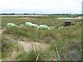 NU2327 : Encampment at Long Nanny by Oliver Dixon