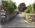 SM7525 : Give way to oncoming traffic - walkers on road, St David's by Jaggery