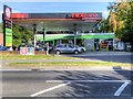 SU6450 : Co-op/Texaco Filling Station on Grove Road by David Dixon