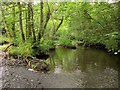 SS7212 : Little Dart near Leigh Bridge by Derek Harper