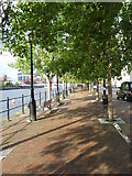 SJ8097 : Waterside walkway at Salford Quays by Rod Allday