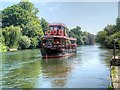 SU9973 : Paddle Boat on the Thames at Runnymede by David Dixon