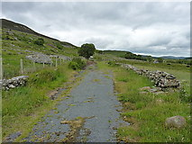 SH8239 : The old road, past Uwch Mynydd by Richard Law
