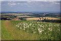 SE8567 : View down Cowcliff Hill by Pauline E