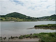 SY2591 : Axe estuary downstream of Black Hole, on a falling tide by Christine Johnstone