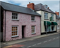 SM7525 : Pink house and The Sampler in St David's by Jaggery