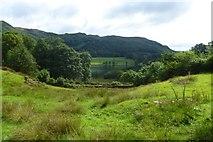 NY3404 : Towards Loughrigg Tarn by DS Pugh