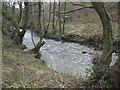SS9188 : A glimpse of the Afon Garw/River Garw near Tylagwyn by eswales