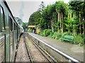 SU5832 : Watercress Line, Alresford Station by David Dixon
