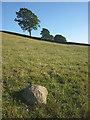 SD5591 : Shap granite erratic near Hagg by Karl and Ali
