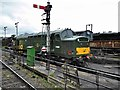 SU6332 : Diesel Locomotive in the Sidings at Ropley by David Dixon