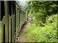 SU7138 : The Watercress Line South of Alton by David Dixon