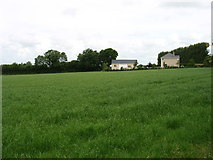 S2654 : Field and houses near Ballysloe by David Purchase
