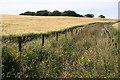 NJ7652 : Field Drain by Anne Burgess