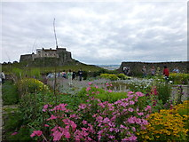 NU1341 : Lindisfarne viewed from the garden by Raymond Knapman
