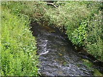 SO8690 : Smestow Brook by Stephen Rogerson