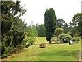 TQ4124 : Sheffield Park Gardens by Paul Gillett