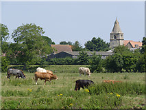 SK7958 : Holme Holme and Holme Church by Alan Murray-Rust
