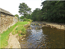 NY9650 : River Derwent, Blanchland by Pauline E