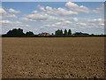 TL2467 : Debden Top Farm by Hugh Venables