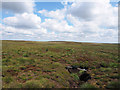 NY9312 : Moorland with groove, north of A66 by Trevor Littlewood