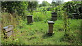 SJ4160 : Beehives at Eaton Hall by Jeff Buck
