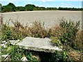 SU1578 : Field, Wroughton, Swindon by Brian Robert Marshall