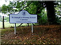 H7545 : Sign, St Joseph's Primary School, Caledon by Kenneth  Allen