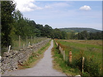 NJ5700 : The Deeside Way - east from the Westerton road by Stanley Howe