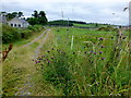 H7545 : Lane, Caledon by Kenneth  Allen