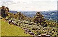 SK2480 : Panorama of Derwent Valley from Booth's Edge, 1996 by Ben Brooksbank