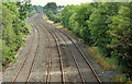 J2463 : Railway lines, Knockmore, Lisburn (July 2014) by Albert Bridge