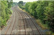 J2463 : Railway lines, Knockmore, Lisburn (July 2014) by Albert Bridge