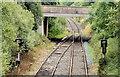 J1667 : Disused railway, Ballinderry (July 2014) by Albert Bridge